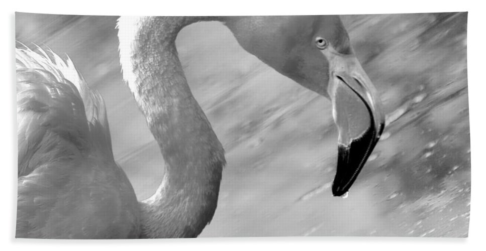 S Hand Towel featuring the photograph Flamingo S by Janal Koenig