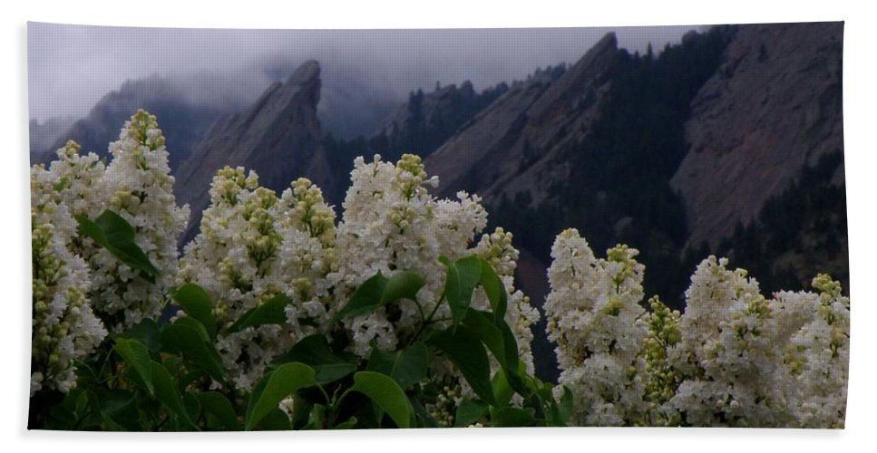 Flatirons Boulder Colorado Lilacs Flowers Spring Landscapes Misty Spring Bath Sheet featuring the photograph Flatirons White Lilacs by George Tuffy