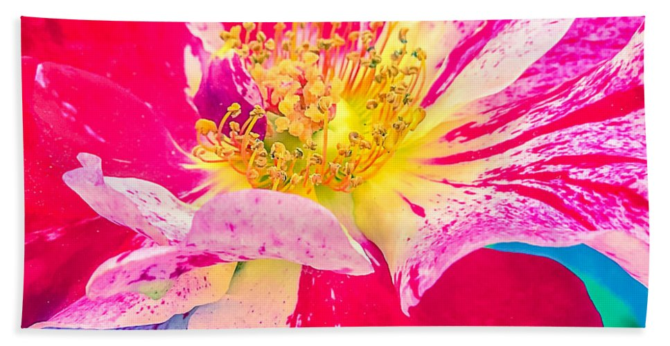 Fleurie Peppermint Rose High Key Bath Sheet featuring the photograph Fleurie Peppermint Rose High Key by Anna Porter