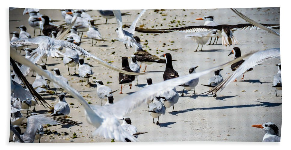 Seagulls Hand Towel featuring the photograph Flight by Marilee Noland