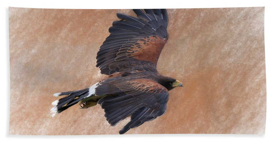 Bird Of Prey Hand Towel featuring the photograph Flight Of The Harris Hawk by James Kenning