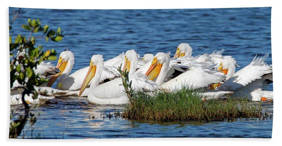 Bird Bath Sheet featuring the photograph Flock Of White Pelicans by Daniel Caracappa