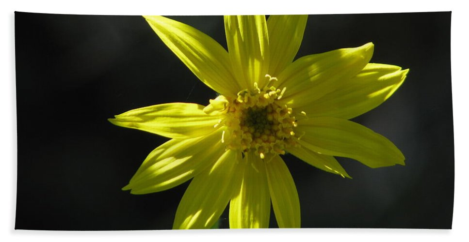 Light Bath Sheet featuring the photograph Floral by Amanda Barcon