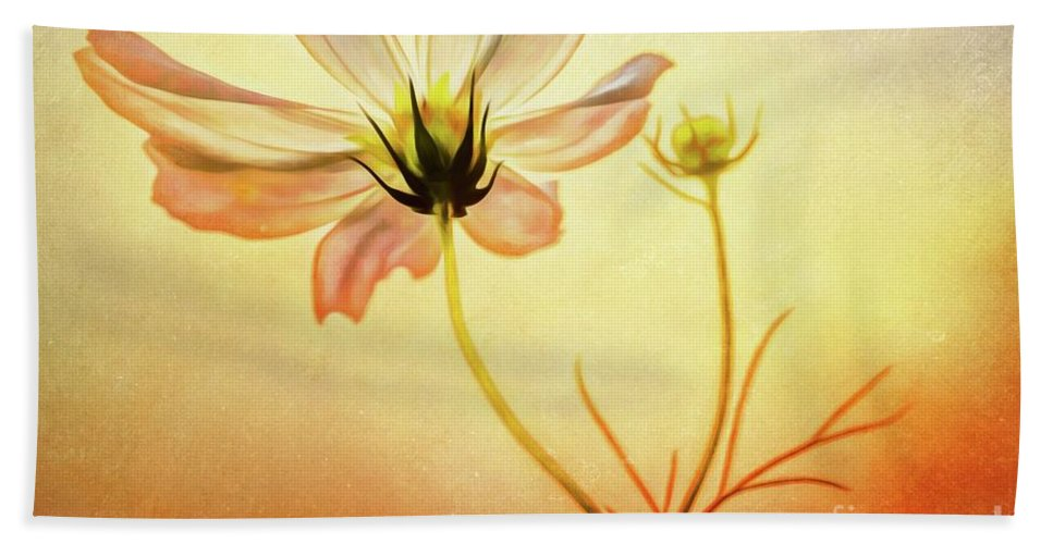 Warrena J. Barnerd Hand Towel featuring the photograph Floral At Dusk by Warrena J Barnerd