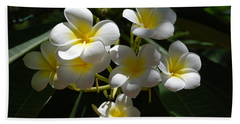 Nature Hand Towel featuring the photograph Floral Beauties by Rob Hans