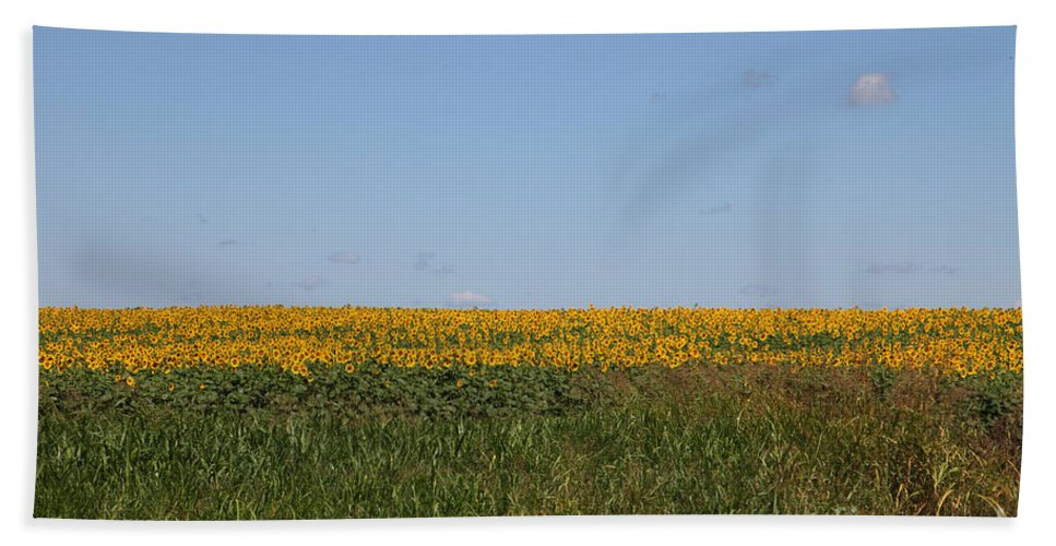 Sunflowers Bath Sheet featuring the photograph Floral Blur by Amanda Barcon