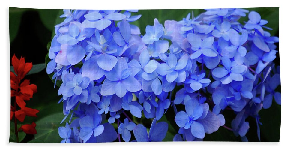 Flowers Hand Towel featuring the digital art Floral Duet by DigiArt Diaries by Vicky B Fuller