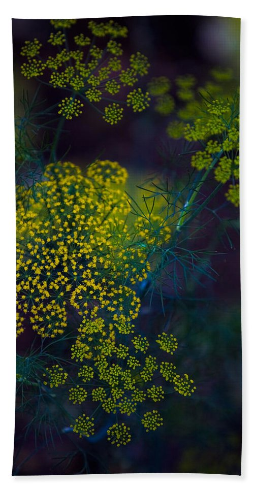 Floral Hand Towel featuring the photograph Floral Fireworks by Chris Lord