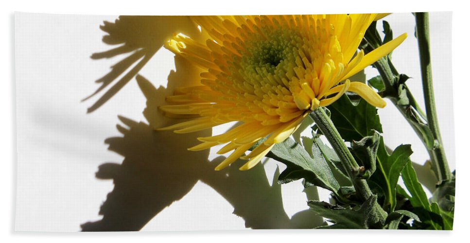 Floral Bath Sheet featuring the photograph Floral No4 by Kume Bryant