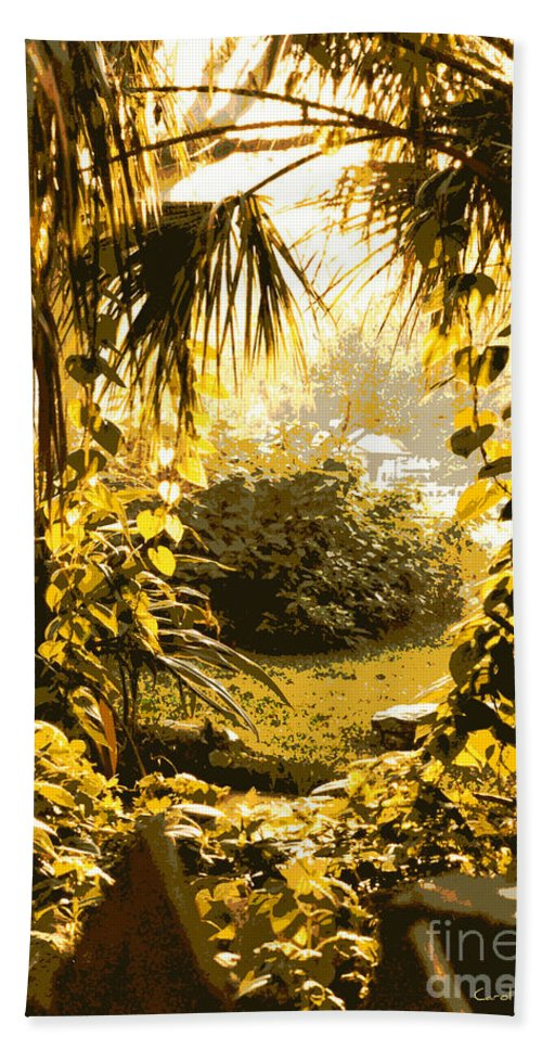 Sunlight Hand Towel featuring the photograph Florida Dream by Carol Groenen