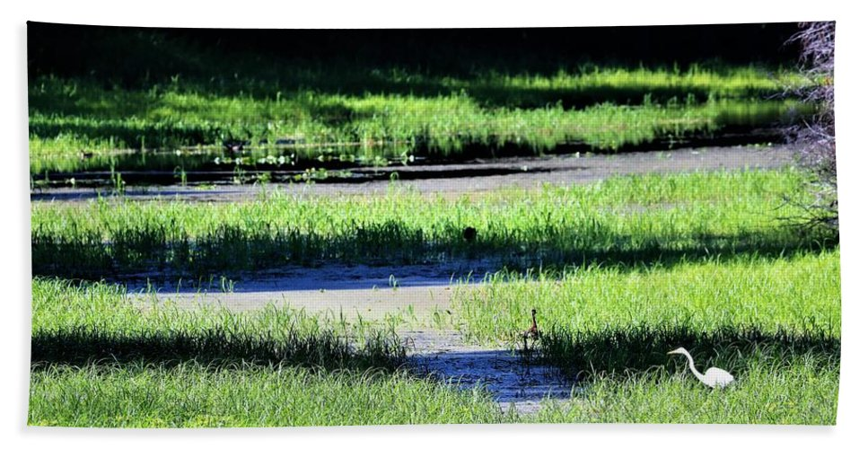 Riverbed Bath Sheet featuring the photograph Florida Lines Of Latitude by Diann Fisher