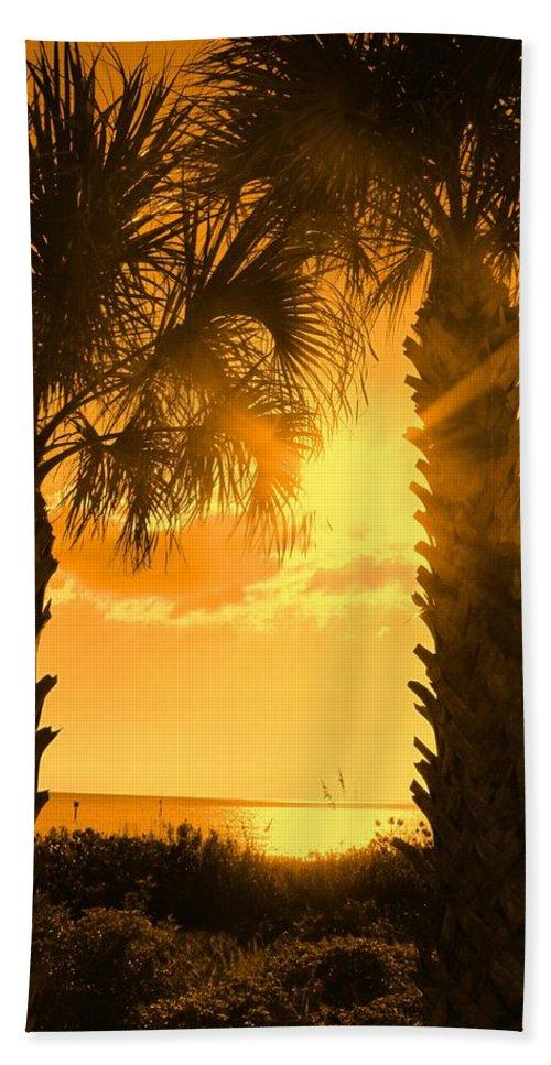 Palm Bath Sheet featuring the photograph Florida Orange by Ian MacDonald
