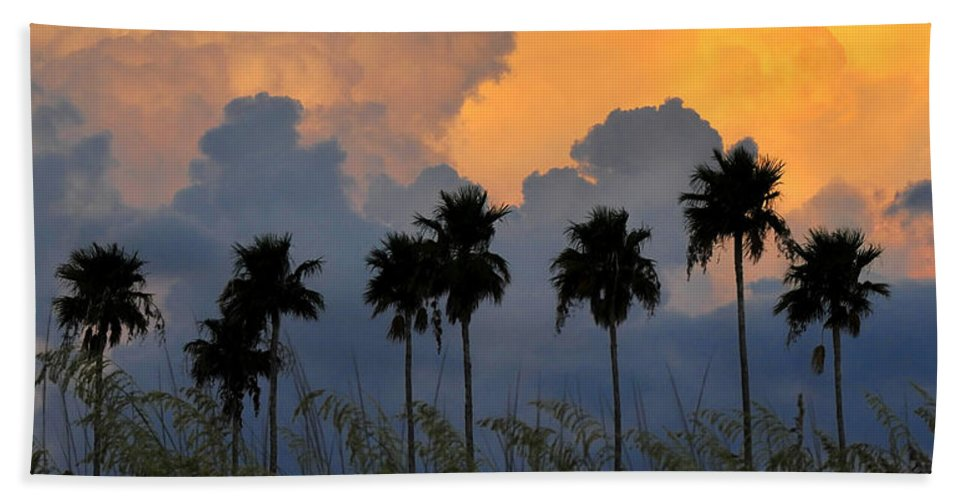 Fine Art Photography Bath Sheet featuring the photograph Florida Poster by David Lee Thompson