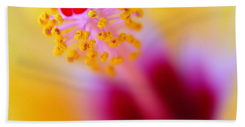 Flower Bath Towel featuring the photograph Flower - Stamen 2 by Jill Reger