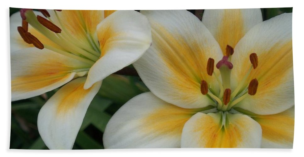 Flower Hand Towel featuring the photograph Flower Close Up 2 by Anita Burgermeister