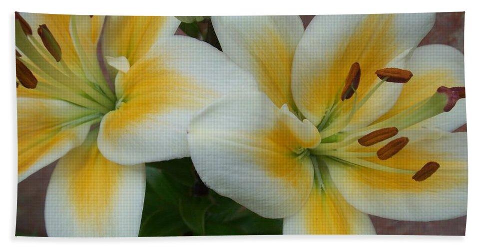 Flower Bath Towel featuring the photograph Flower Close Up 5 by Anita Burgermeister