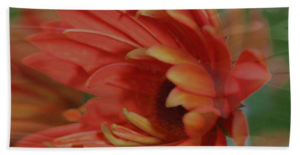 Flowers Bath Towel featuring the photograph Flower Dreams by Linda Sannuti