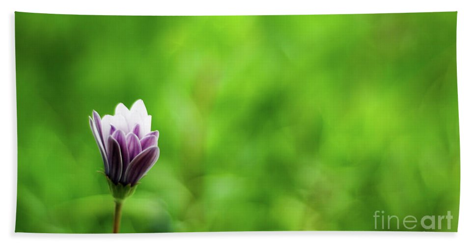 Isolated Flower Bath Sheet featuring the photograph Flower Front Of Blur Background. by Ersoy Basciftci