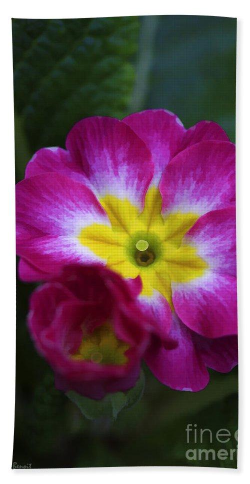 Flower Bath Sheet featuring the photograph Flower In Spring by Deborah Benoit