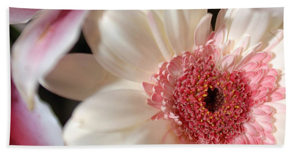 Flower Hand Towel featuring the photograph Flower Pink-white by Jill Reger
