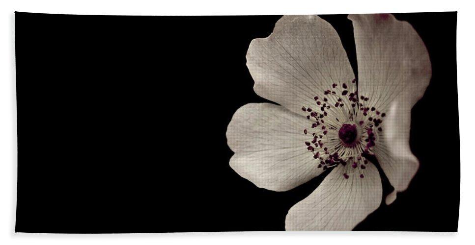 Flower Bath Sheet featuring the photograph Flower1 by Danielle Silveira