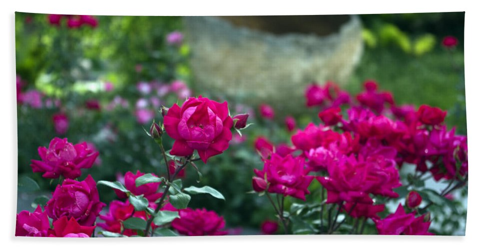 Flowers Bath Towel featuring the photograph Flowering Landscape by Scott Wyatt