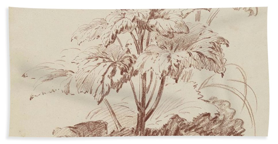 Hand Towel featuring the drawing Flowering Plant With Buds by Jean-baptiste H?et, I