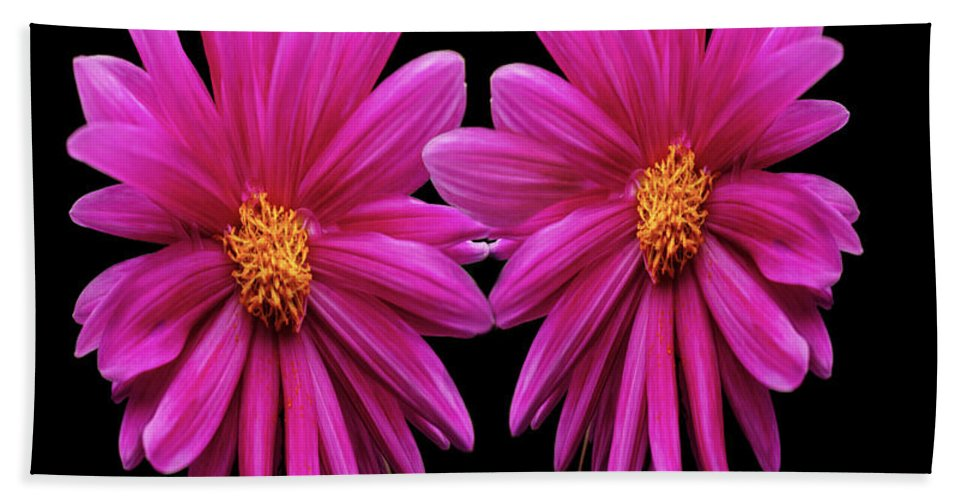 Flowers Hand Towel featuring the photograph Flowers 74 by Ben Yassa