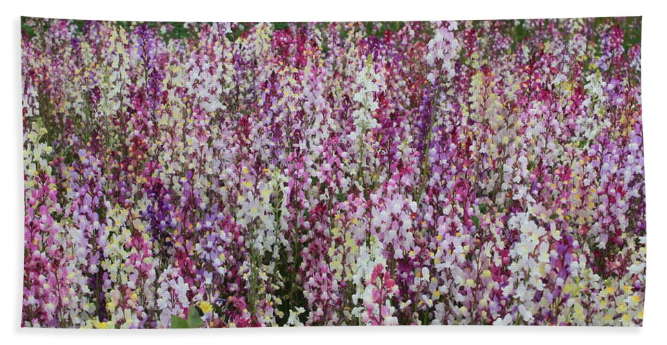 Field Of Flowers Bath Towel featuring the photograph Flowers Forever by Carol Groenen