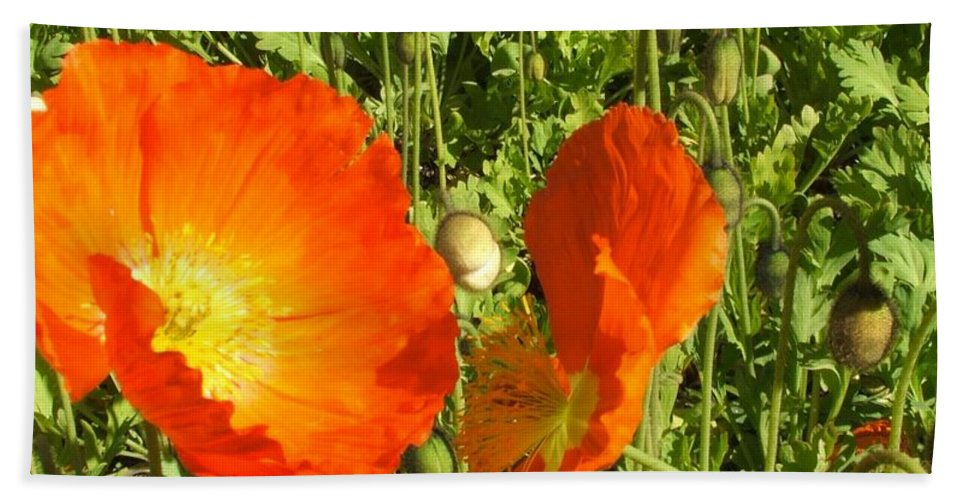 Flowers Bath Sheet featuring the photograph Flowers by Shari Chavira
