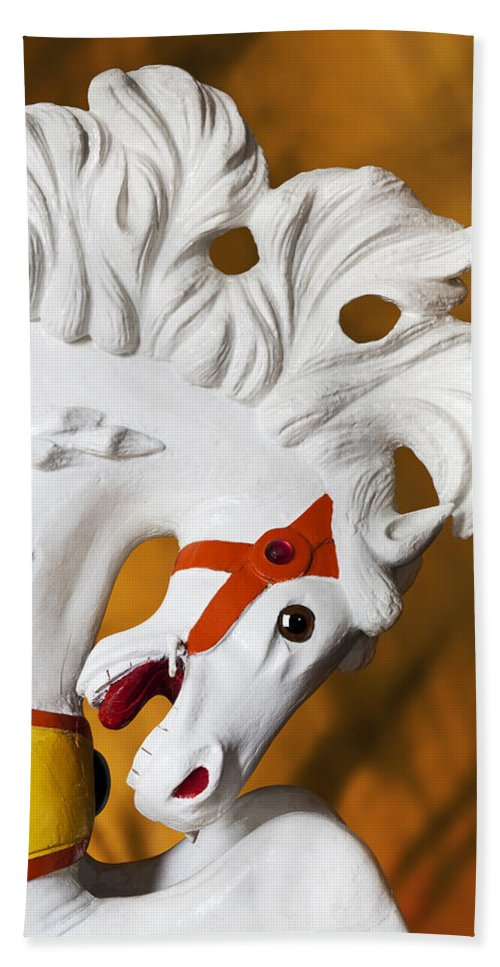 Carousel Bath Sheet featuring the photograph Flowing Mane 1 by Kelley King