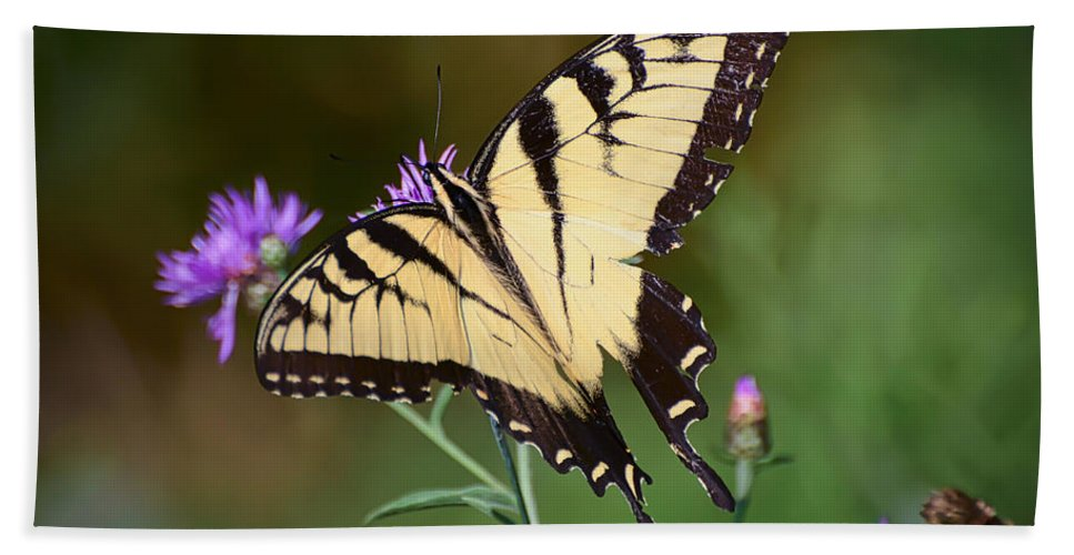 Eastern Tiger Swallowtail Butterfly Hand Towel featuring the photograph Flying Flowers by Kerri Farley