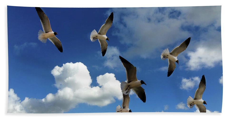 Sky Hand Towel featuring the photograph Flying High In The Clouds by Jennifer Stackpole