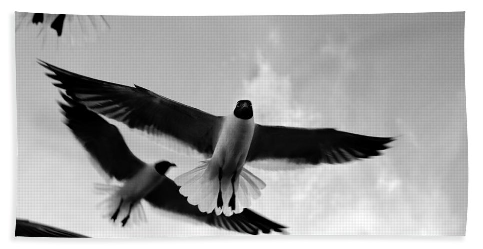 Bird Hand Towel featuring the photograph Flying High by Marilyn Hunt