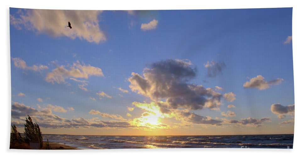 Grand Bend Hand Towel featuring the photograph Flying Onshore Two by John Scatcherd