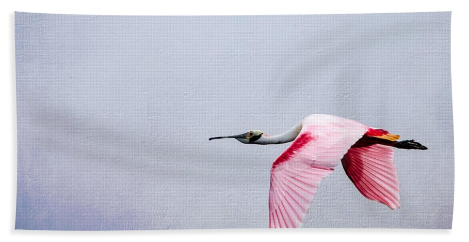 Spoonbill Hand Towel featuring the photograph Flying Pretty - Roseate Spoonbill by Debra Martz