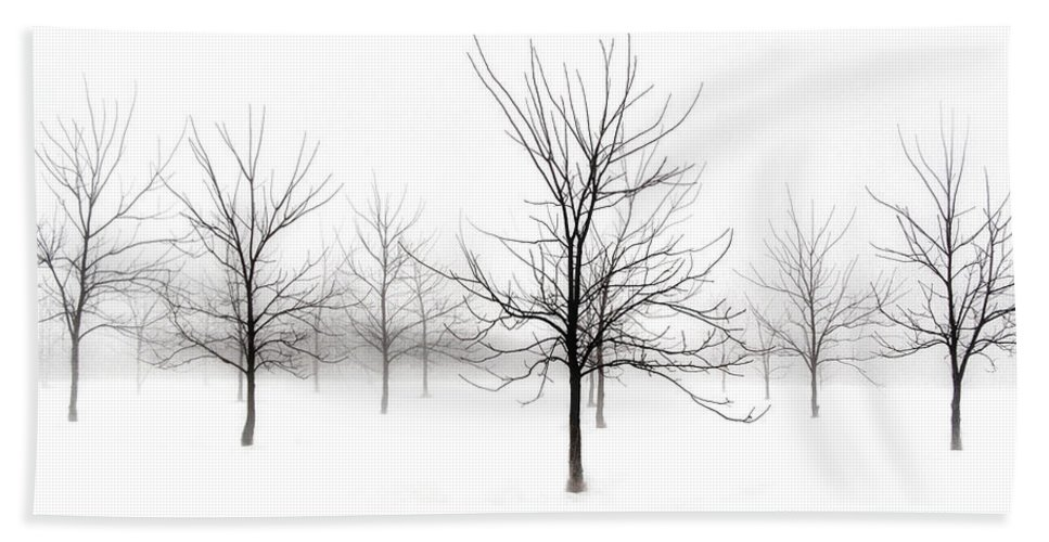 Black Walnut Trees Bath Sheet featuring the photograph Fog And Winter Black Walnut Trees by Angie Rea