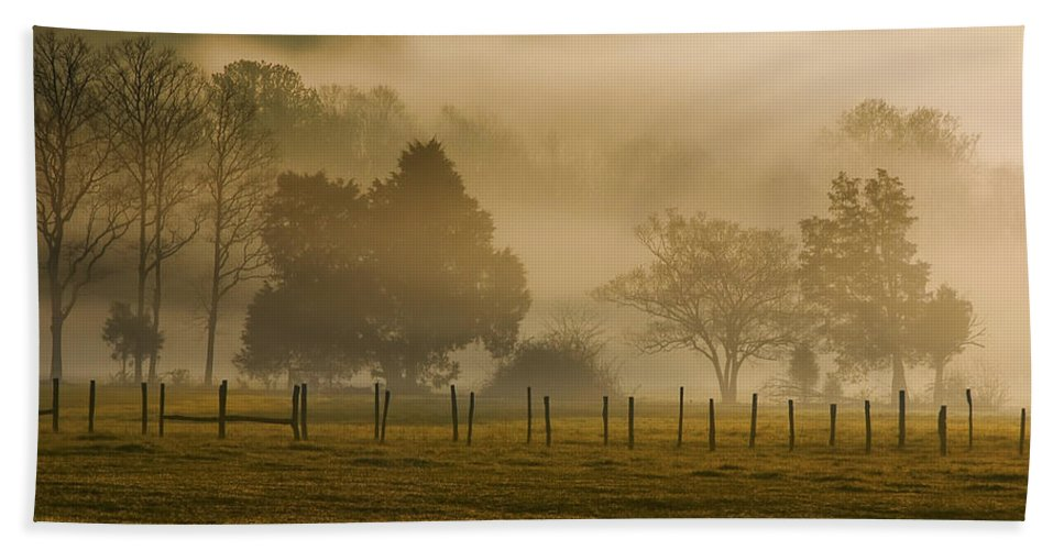 Park Hand Towel featuring the photograph Fog In The Park by Mitch Spence
