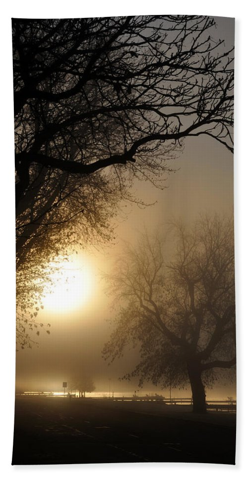 Foggy Bath Towel featuring the photograph Foggy Morn by Tim Nyberg