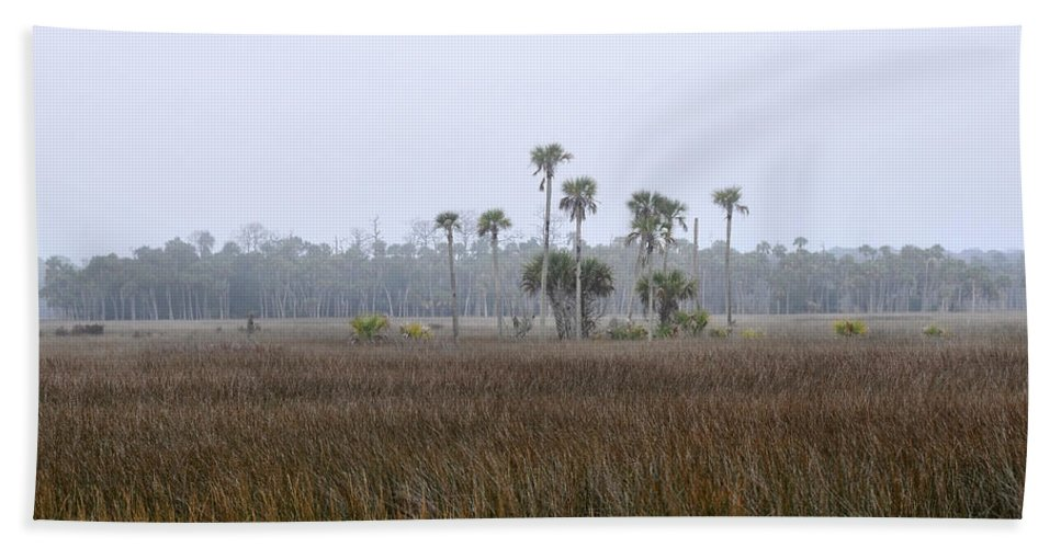 Florida Hand Towel featuring the photograph Foggy Morning by David Lee Thompson