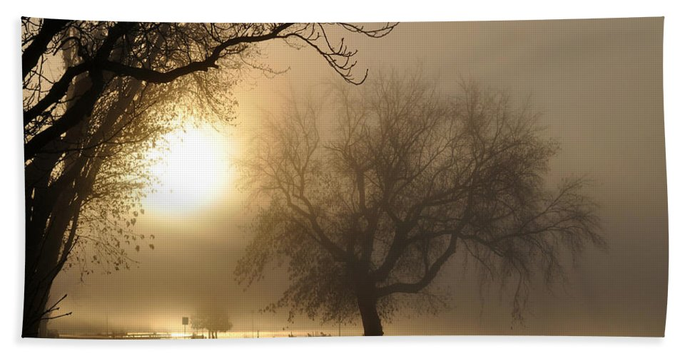 Foggy Hand Towel featuring the photograph Foggy November Sunrise On The Bay by Tim Nyberg