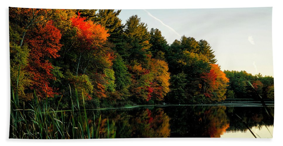 October Hand Towel featuring the photograph Foliage Reflections by Lilia D