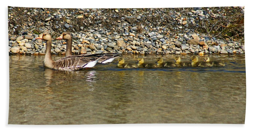 Ducks Bath Towel featuring the photograph Follow The Leader by Anthony Jones