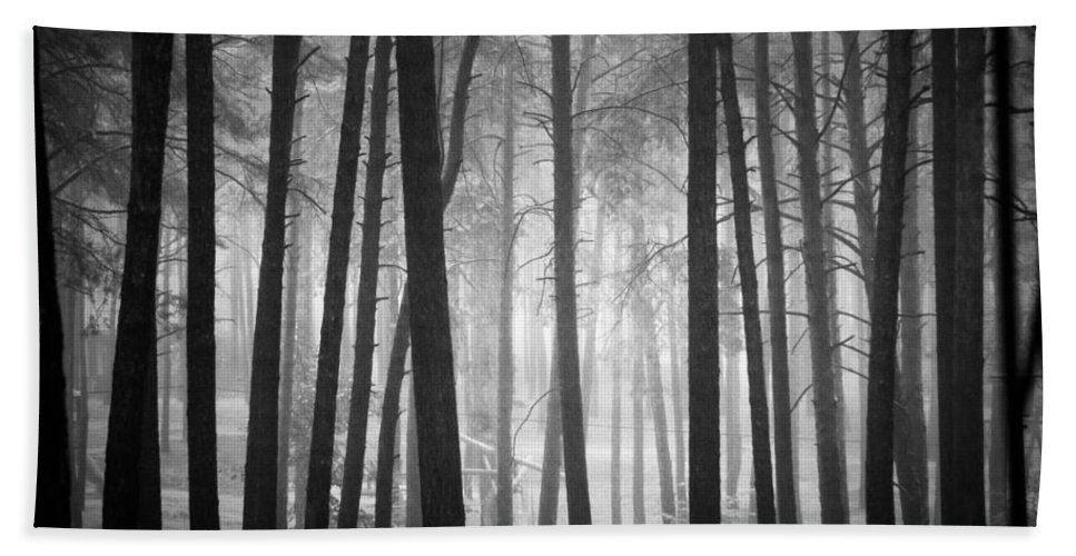 Forest Bath Sheet featuring the photograph Forest by Dorit Fuhg