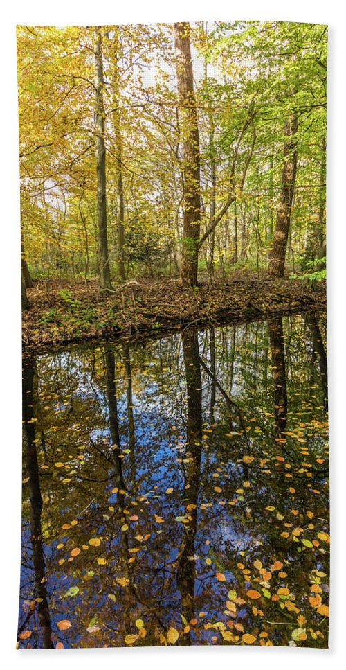 City Hand Towel featuring the photograph Forest Leaf Reflection by Andrew Balcombe