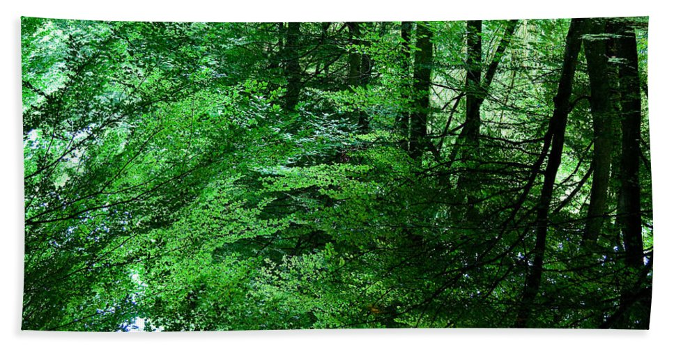 Forest Bath Sheet featuring the photograph Forest Reflection by Dave Bowman