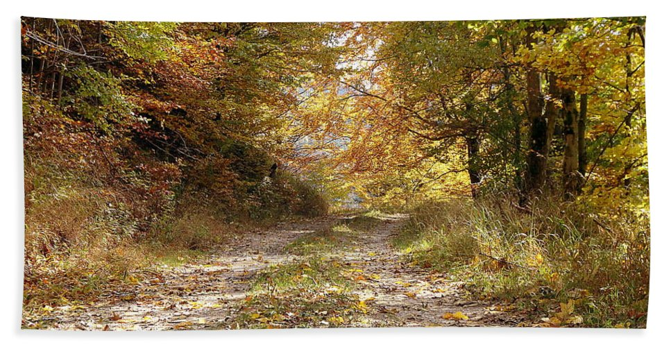 Tree Hand Towel featuring the photograph Forest Stone Path by Danler Sk