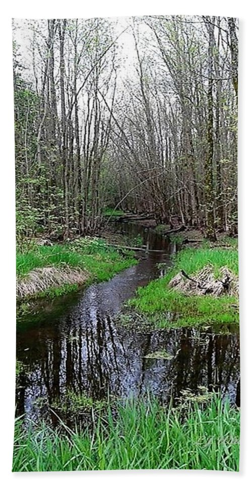 Creeks Bath Sheet featuring the digital art Forest Trees Creek Pathway by Lj White