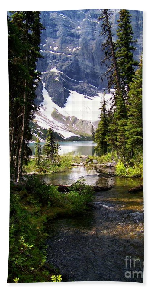 Crystal Clear Creek Hand Towel featuring the photograph Forest View To Mountain Lake by Greg Hammond