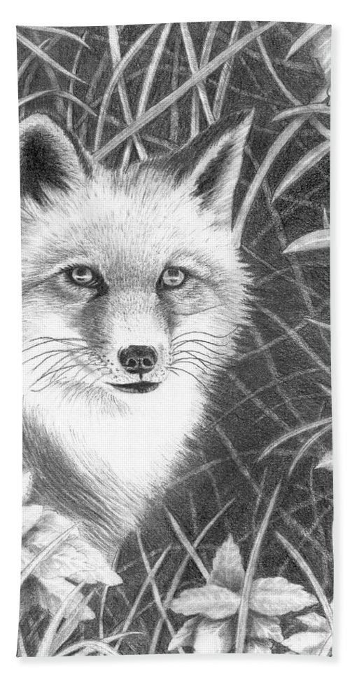 Wildlife Hand Towel featuring the drawing Fox by Lawrence Tripoli